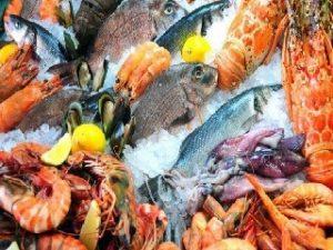 Tienda Comercializadora De Carnes Pescados Y Mariscos Kaleth en Bucaramanga