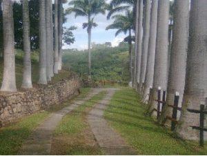 Centro Recreativo Palma Brava en Bucaramanga